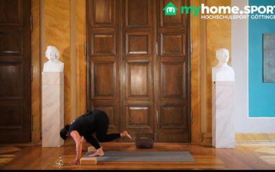 Vinyasa Yoga Fortgeschrittene Kurs 5