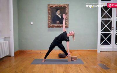 Vinyasa Yoga Basic Kurs 2