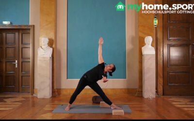 Vinyasa Yoga Fortgeschrittene Kurs 4