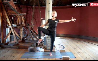 Vinyasa Yoga Basic Kurs 6