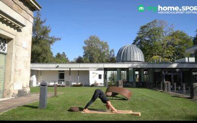 Vinyasa Yoga Basic Kurs 8