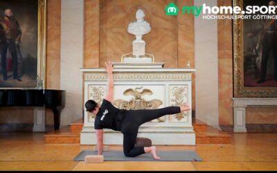 Vinyasa Yoga Fortgeschrittene Kurs 6