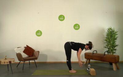 Hatha Yoga mit Sophia