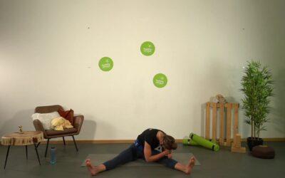 Yin Yoga mit Franzi